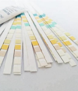 Image of Ketone Strips for Urine Analysis (50 strips) - Healtholicious One-Stop Biohacking Health Shop