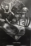 Houston Texans Helmet Print