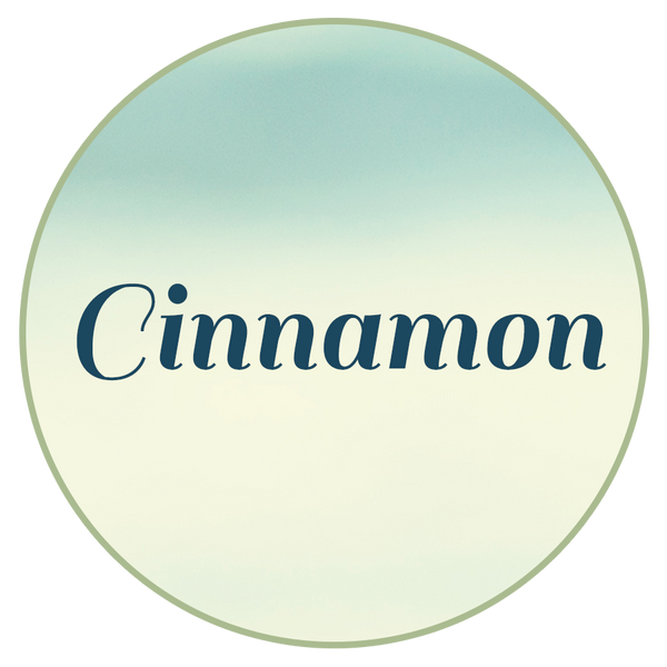 Cinnamon - Chocolate Covered Seafoam Candy