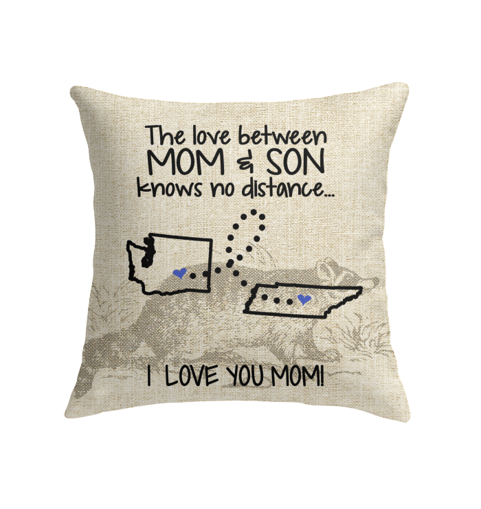 TENNESSEE WASHINGTON THE LOVE BETWEEN MOM AND SON