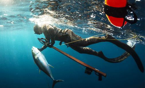 Riffe Spearguns for Sale Details | Brownie's YachtDiver