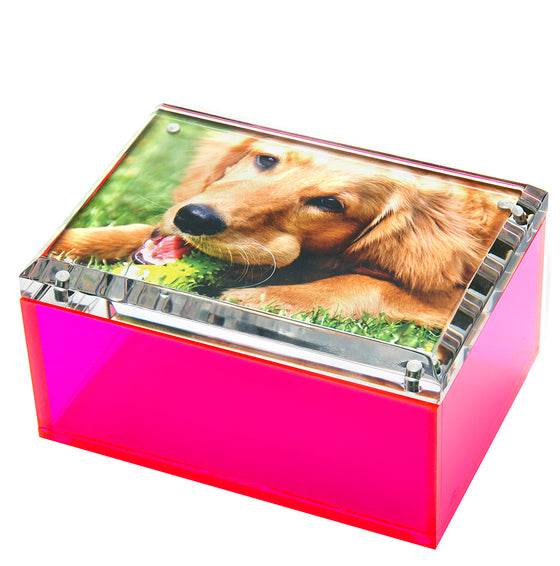 Medium photo box - neon pink