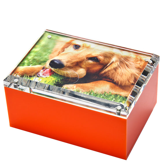 Medium photo box - orange