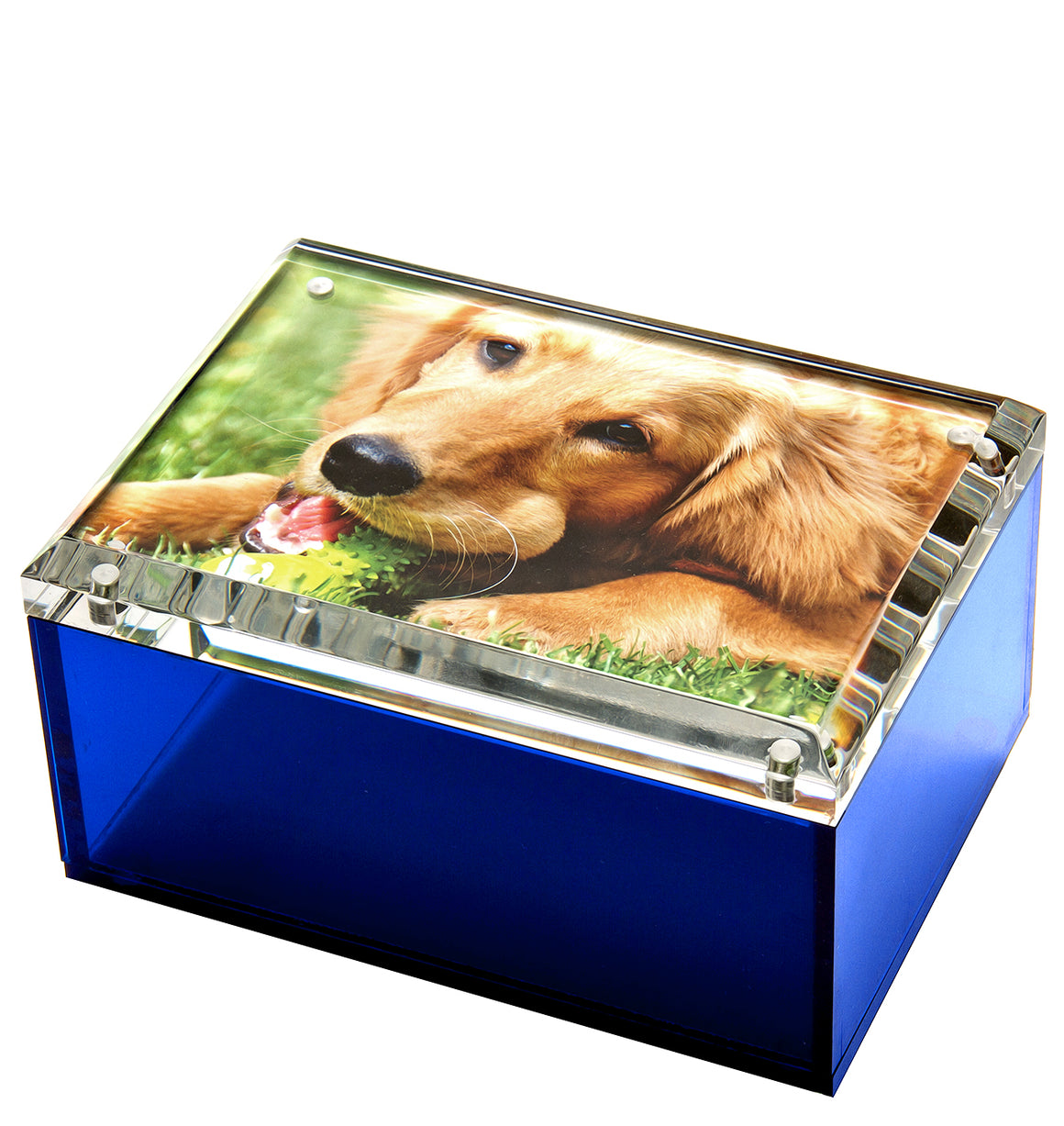 Medium photo box - sea glass blue - 5 x 7