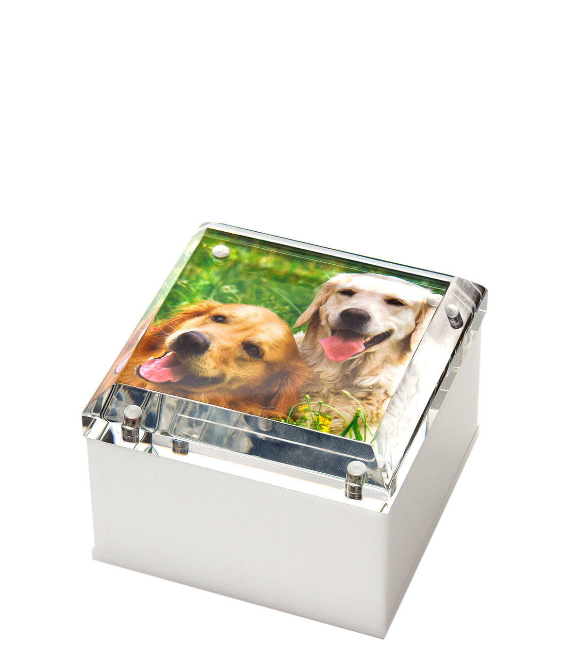 Small photo box - white