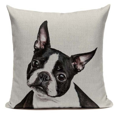 Boston Terrier Dog Face Pillow B1