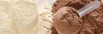 Why Whey? The Benefits of Eating Whey Protein