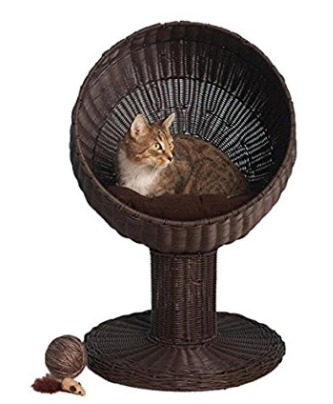 Regal Feline Roost