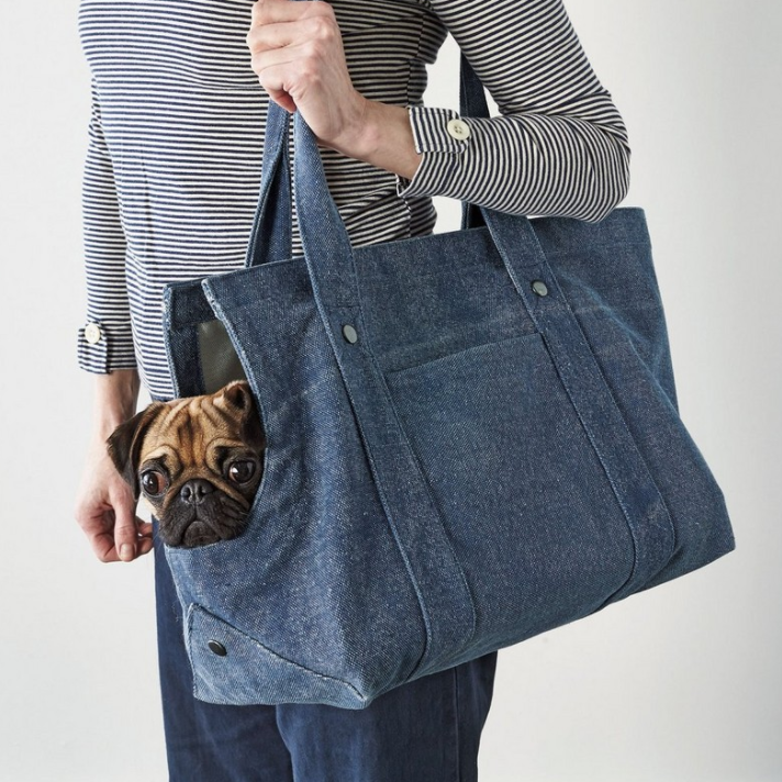 Distressed Canvas Dog Tote
