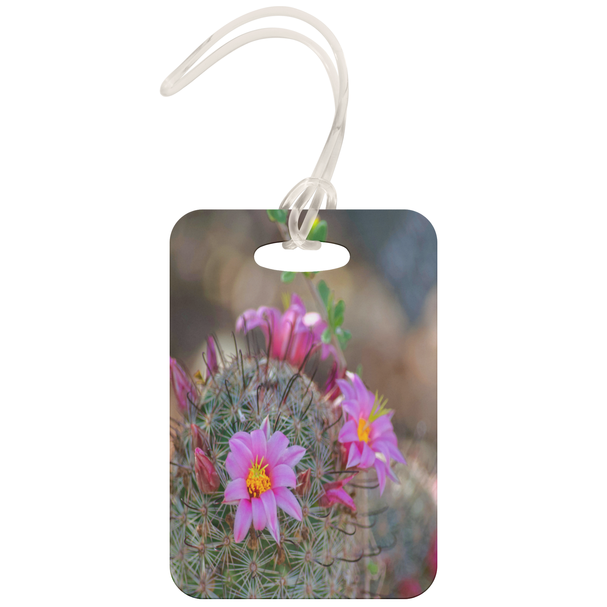 Desert Beauty Luggage Tags - Pink Flowers