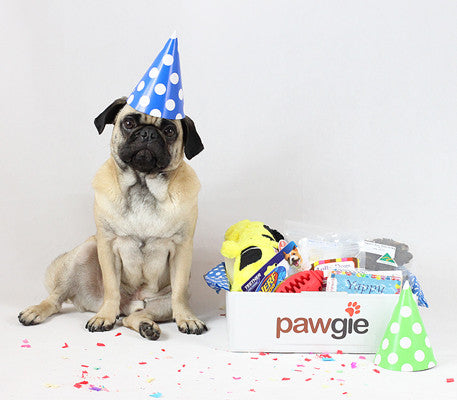 Pawgie Gift Boxes