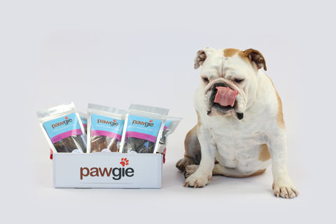 Treat Pawgie Box