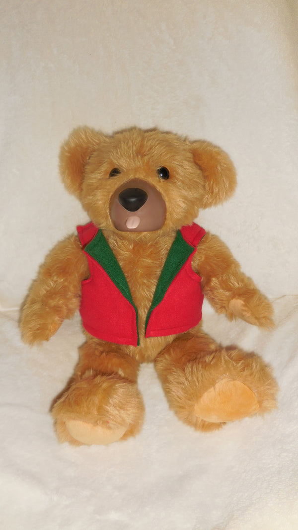 Christmas Teddy Love