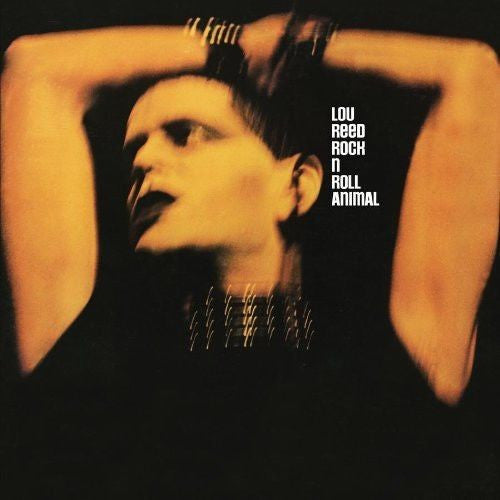 Lou Reed - Rock N Roll Animal Album Cover