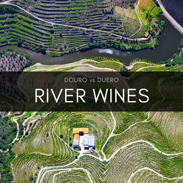 River Wines: Douro vs Duero Masterclass (Early Bird Special)
