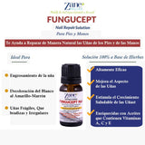 Fungucept Nail Repair Solution. Helps Nails Grow Healthy. Helps New Nail Grow Free of Infection. Stops Discoloration, Thickening, Crumble, Brittle and Cracked nails. 100% Natural Ingredients. 0.33 oz - 10 ml.