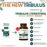 Tribulus Terestris Testosterone Booster For Men - Improves Reproductive Health And Virility - 60 Vegetarian Capsules By Himalaya (Since 1930) Tribulus - Original