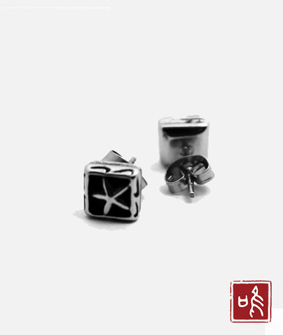 stainless steel star earrings