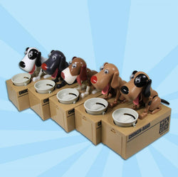 Doggy Coin Box -