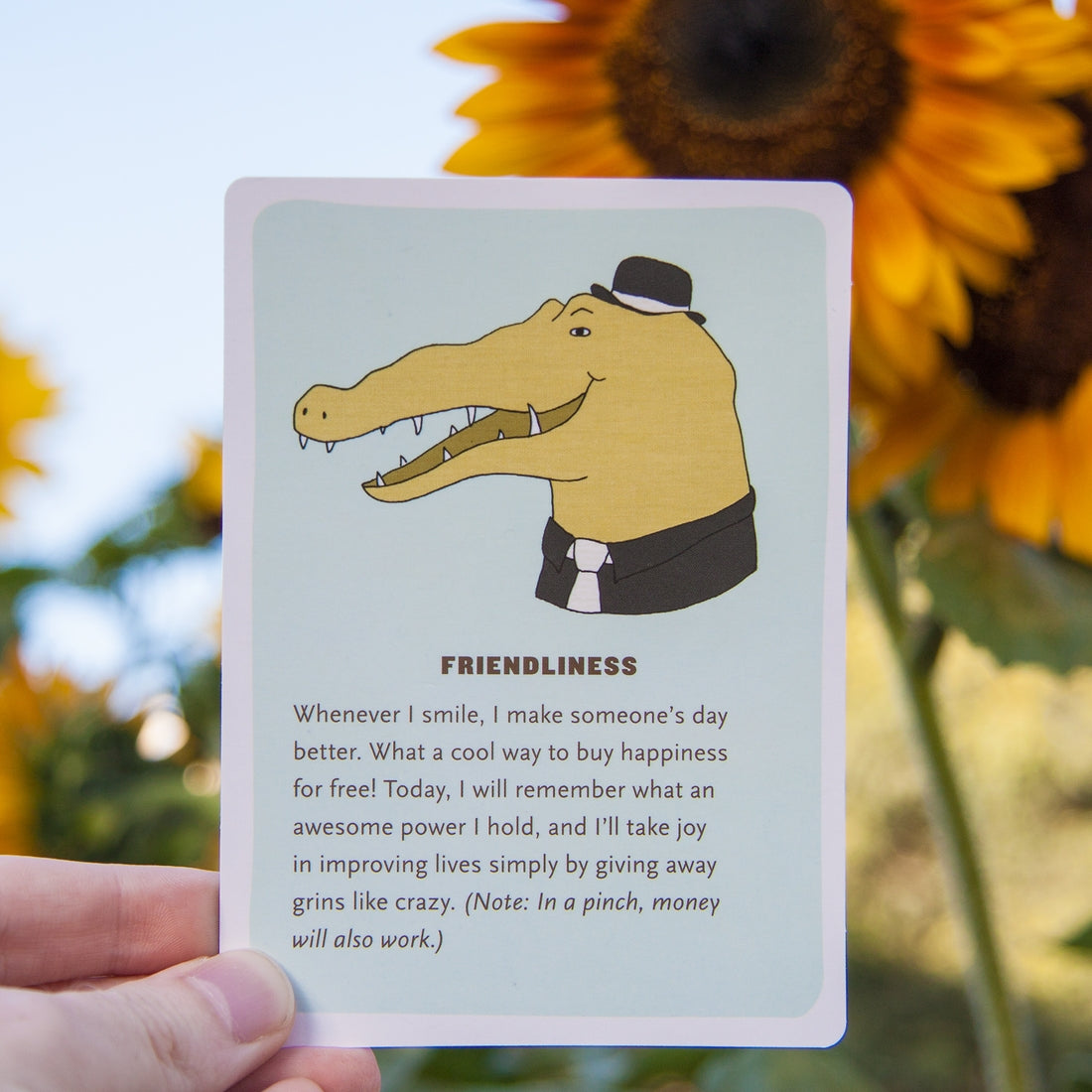 Affirmators! 50 Affirmation Cards to Help You Help Yourself--without the Self-Helpy-Ness!