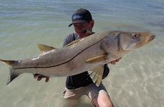 Land Based Snook Fishing