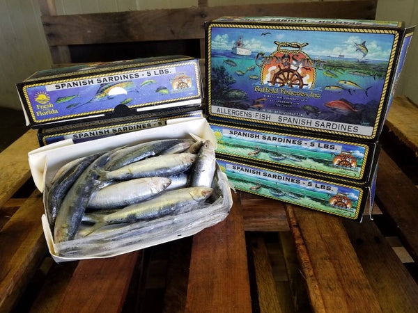 Captain Salty Frozen Sardines