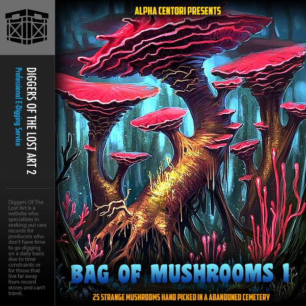 Bag Of Mushrooms 1