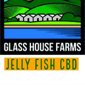 Glass House / Jelly Fish CBD