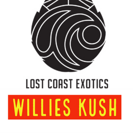 Lost Coast / Willies Kush