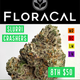 Floracal  / Slurri Crashers