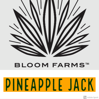 Bloom Farms / Pineapple Jack