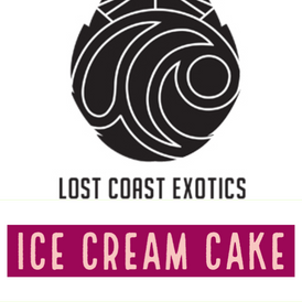 Lost Coast / Ice cream Cake