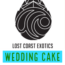 Lost Coast / Wedding Cake