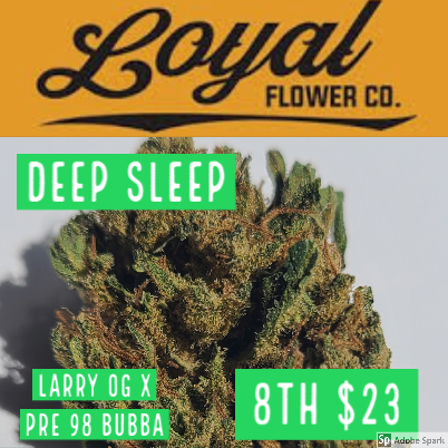 Loyal / Deep Sleep