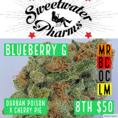 Sweetwater / Blueberry G