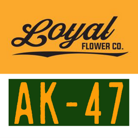 Loyal / AK-47
