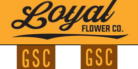 Loyal / GSC