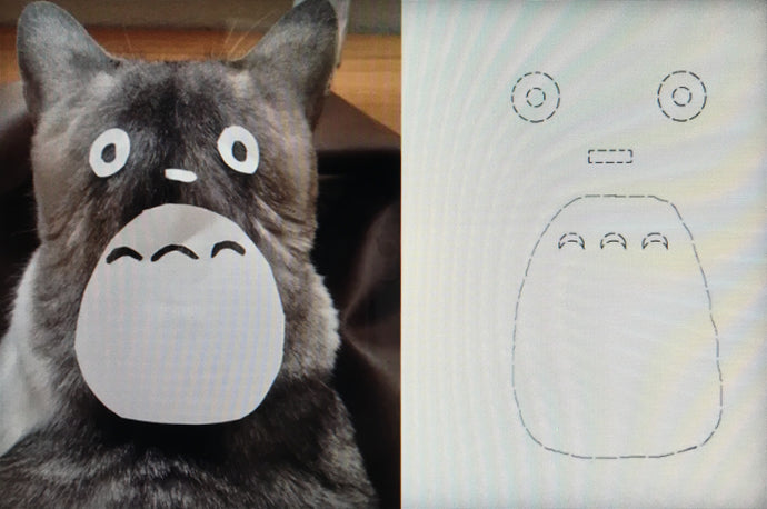 How To Turn Any Cat Into Totoro!