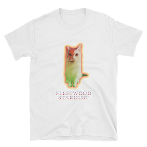 "PP ""Fleetwood Stardust"" Men's Softstyle T, 3 Colors - Navy Blue, Black, White"