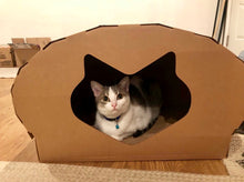 Kittypod Dome Cat Play House Lounge Scratcher Bed