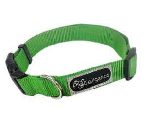 Cat Dog Pet Collar, Sporty Solid - 4 Colors