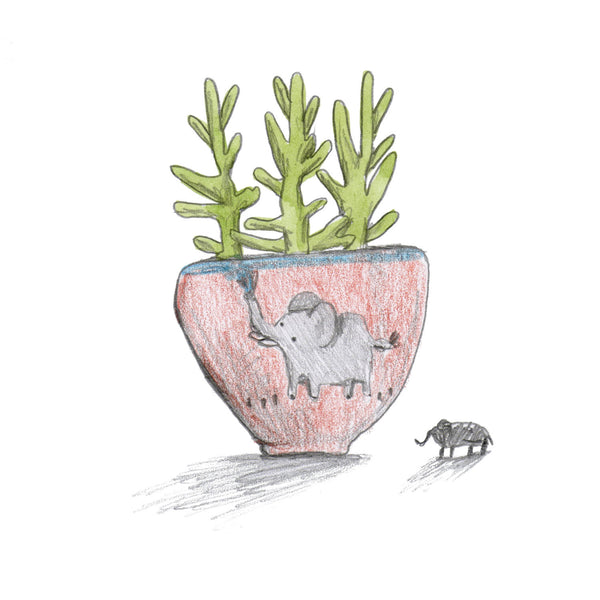 Succulent In Elephant Planter
