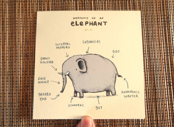 Anatomy Of An Elephant Card