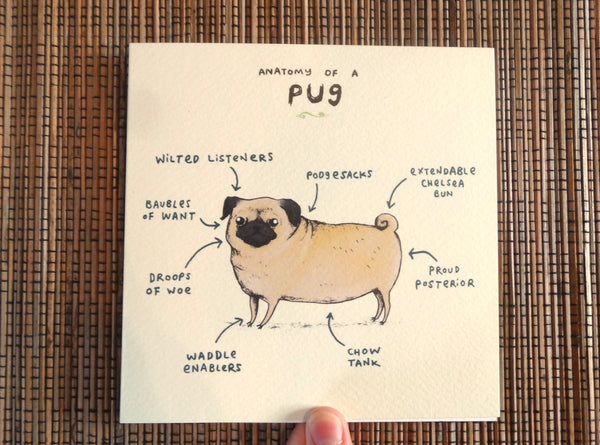 Anatomy Of A Pug Card