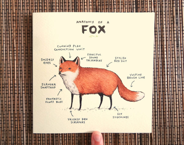 Anatomy Of A Fox Card