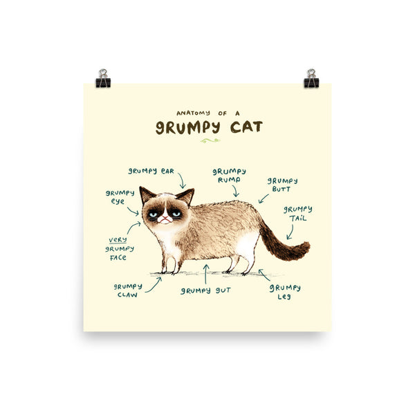 Anatomy of a Grumpy Cat Poster