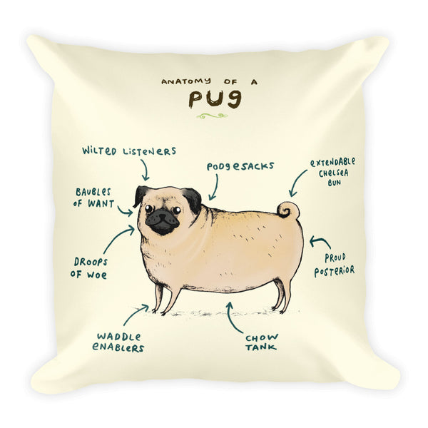 Anatomy of a Pug Pillow