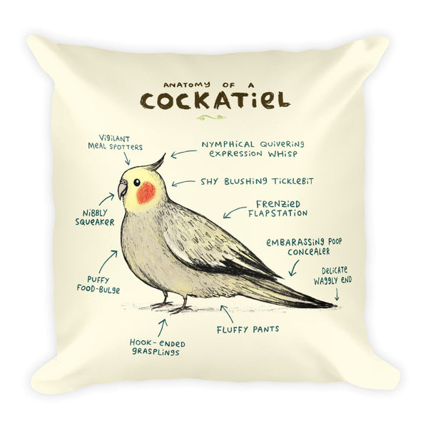 Anatomy of a Cockatiel Pillow