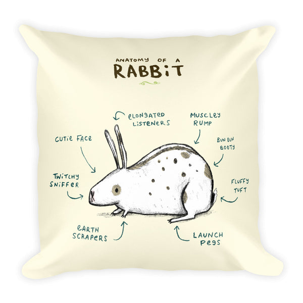 Anatomy of a Rabbit Pillow