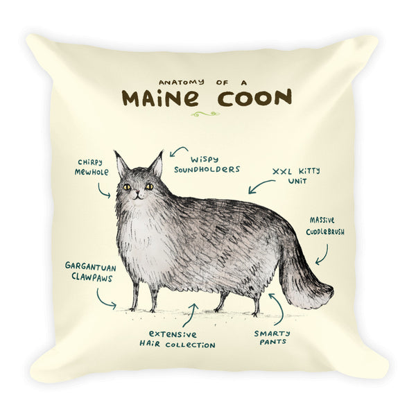 Anatomy of a Maine Coon Pillow